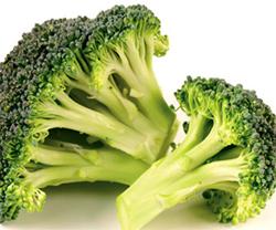 hypothyroid diet
