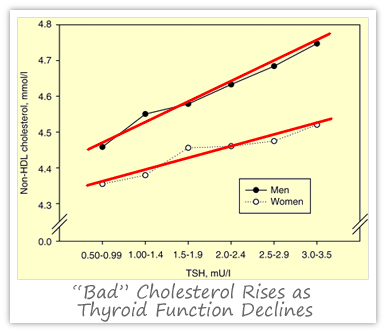 thyroid-cholesterol